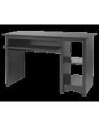 Купить парту в Красноперекопске - смотреть каталог мебели. Низкая цена на заказ с доставкой.